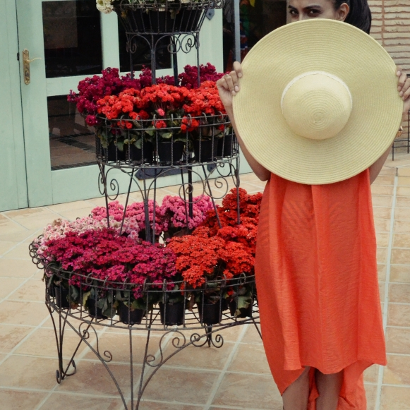 A Big Sun Hat