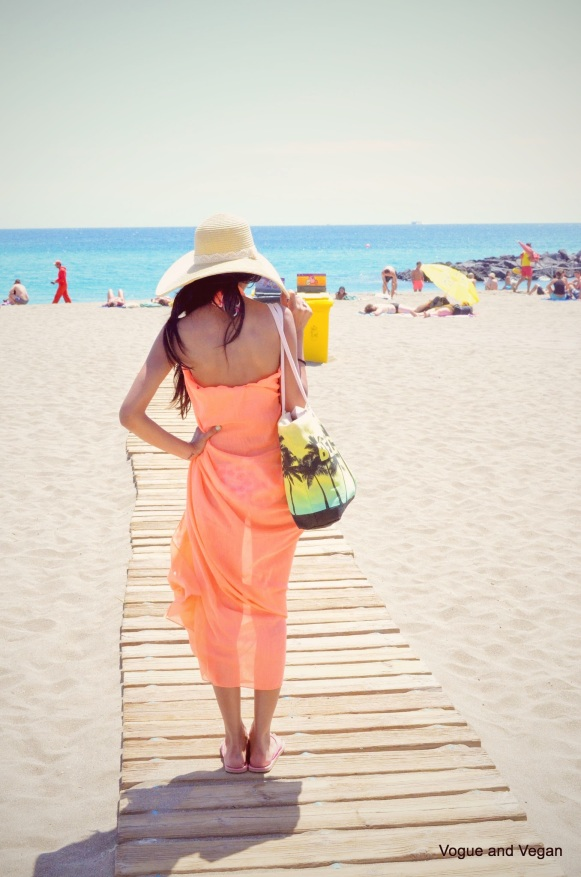 A Big Beach Bag
